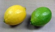 瀬戸田町産エコレモン